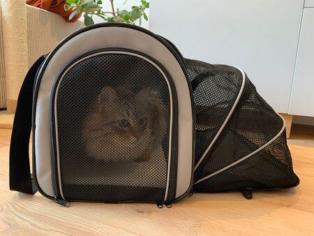 katten transportbox